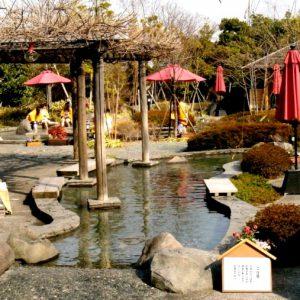 Ōedo Onsen Monogatari (Токио)