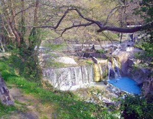 Источник Aridea теплая река