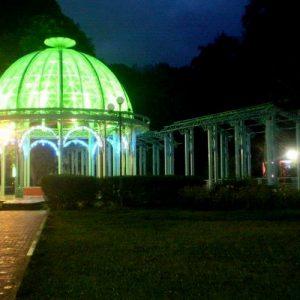 Боржоми парк ночью