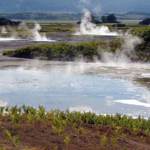 Малкинские горячие воды