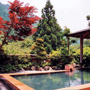 Sawada-kōen Rotemburo Onsen термальный источник на полуострове Идзу