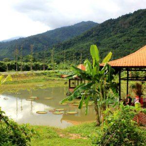 Национальный парк Янг Бей с термальными водами